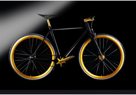 Goldencycle 2PRO